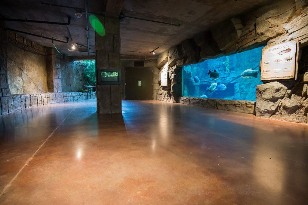 aquarium-interiors-1212
