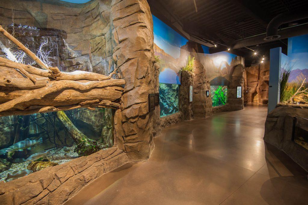 aquarium-interiors-1301
